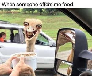 when someone offers me food funny picture
