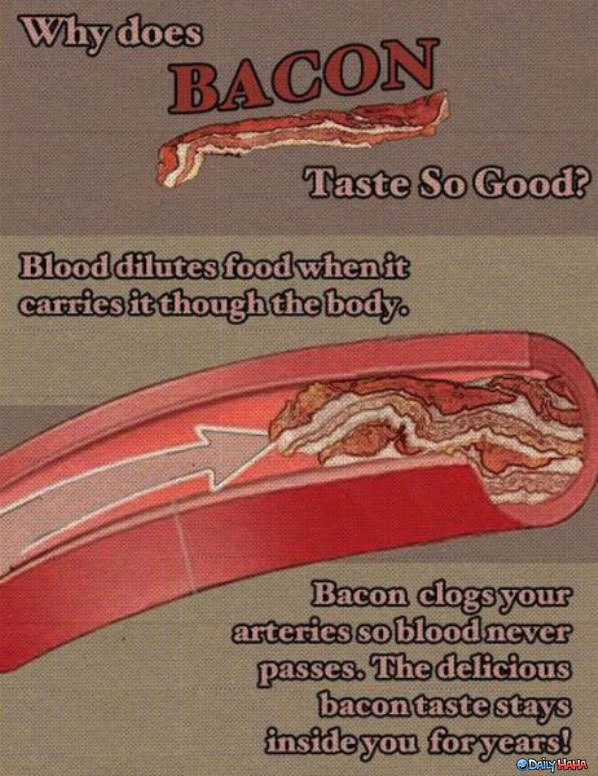 Bacon Taste So Good funny picture