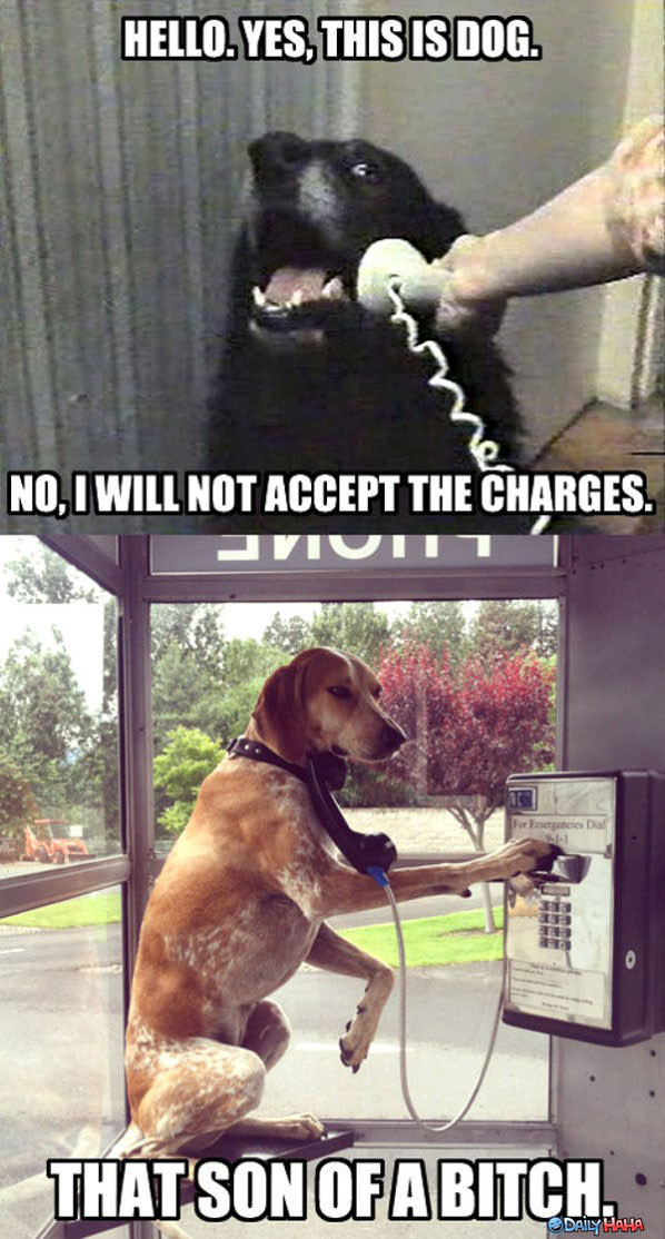 Not Accepting Charges funny picture