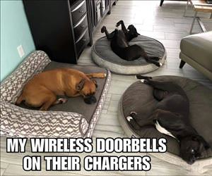 wireless-doorbells