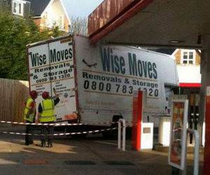 Wise Moves funny picture