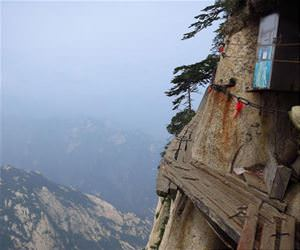 worlds most dangerous trail funny picture