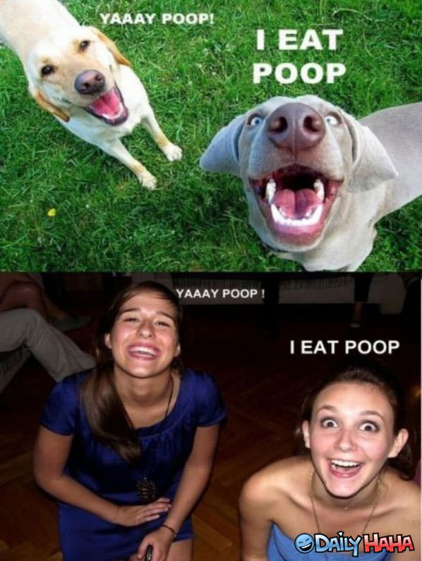 Yay Poop funny picture