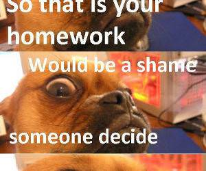 Your Homework funny picture