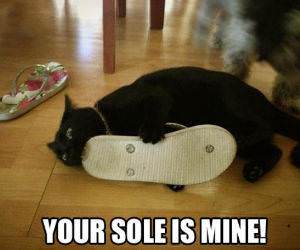 Your Sole funny picture