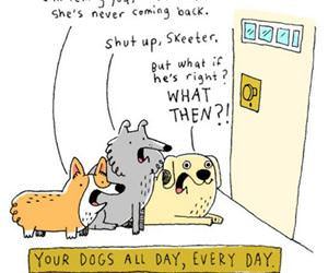 your dogs every day funny picture