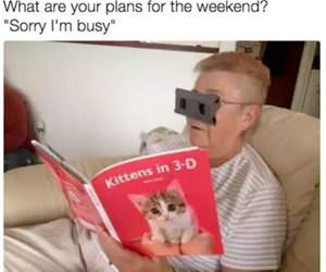 your plans for the weekend funny picture