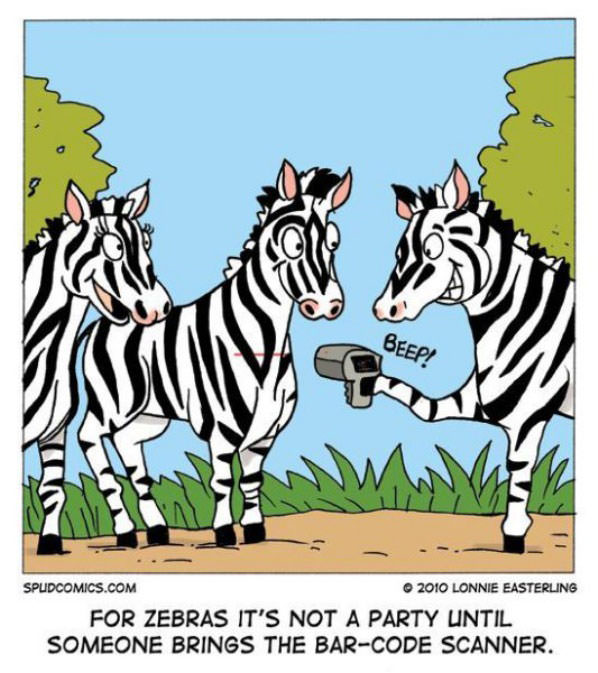 Zebra Party funny picture