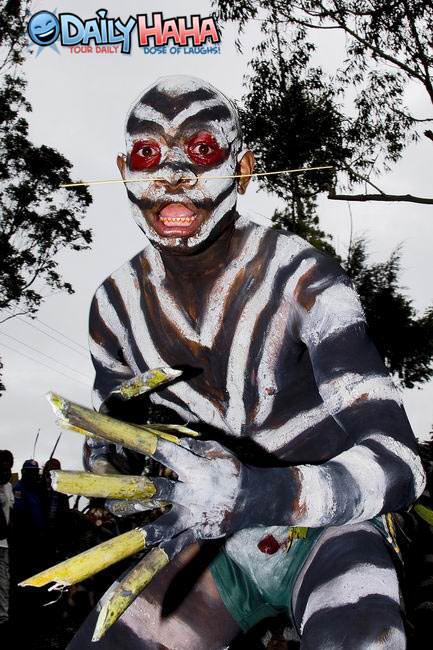 http://www.dailyhaha.com/_pics/zebra_colored_ninja.jpg