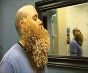 2747 Toothpick Beard Funny Video