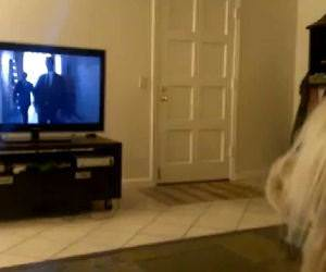 Dog singing opera Funny Video
