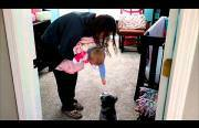 baby loves jumping puppy Funny Video