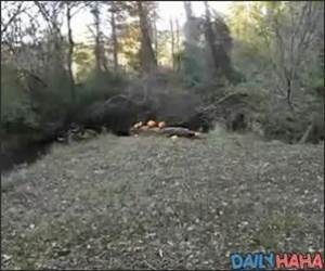 Chainsaw Machine Gun Video