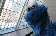 cookie monster profound thoughts Funny Video