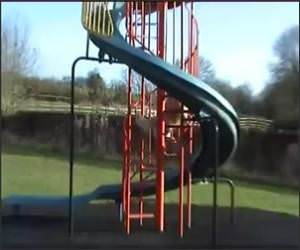 Dog Playing on Slide Funny Video