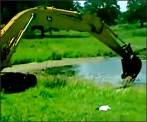 Excavator Pond Swinger Video