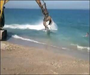 Excavator Surfing Video