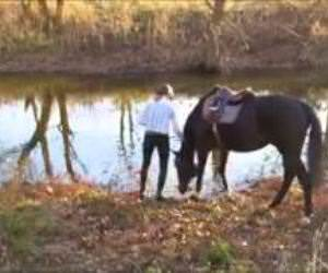 horses first time in water Funny Video