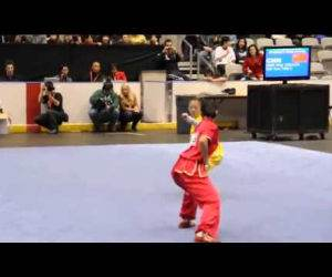insane wushu championship Funny Video