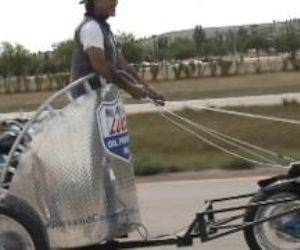 Motorcycle Chariot Funny Video
