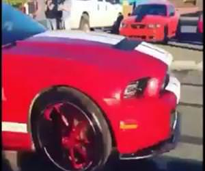mustang burnout instant karma Funny Video