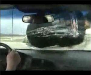 New Windshield Funny Video