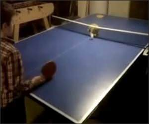 Ping Pong Kitten Funny Video