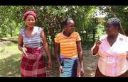 pop rocks in africa Funny Video