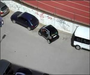 Smart Car, Stupid Driver Funny Video