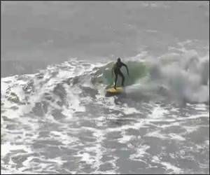 Surfing Kick Flip Funny Video