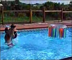 Swimming Pool Basketball Funny Video