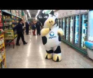 the dancing cow Funny Video