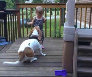 Toddler and dog dancing on deck Funny Video