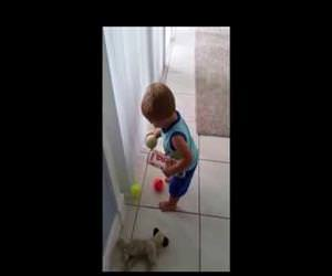 toddler struggles to pick up balls Funny Video
