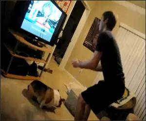 Wii Skii Jump Funny Video