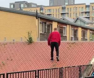 this guy does weird parkour