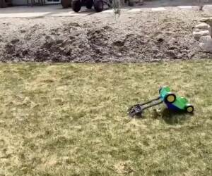 fell down the hill