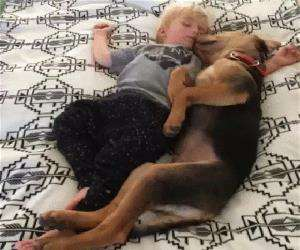 taking a nap with my buddy