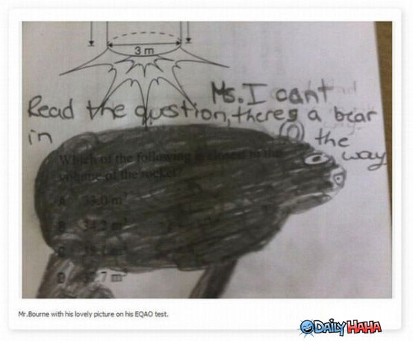 The Bear in the Way funny picture