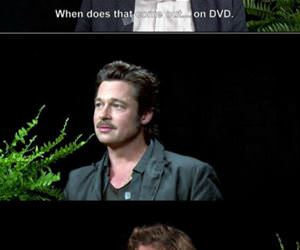 brad pitt interview funny picture