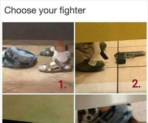 choose your fighter ... 2