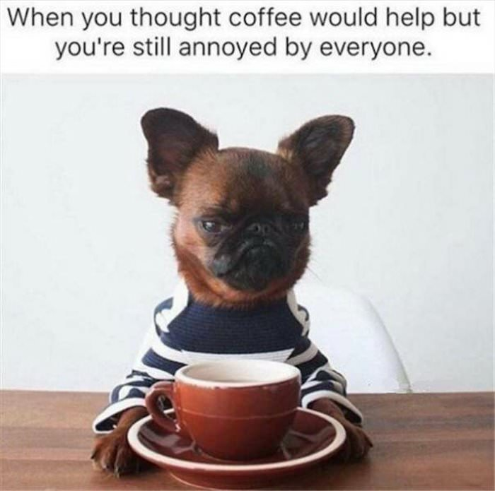 coffee might help