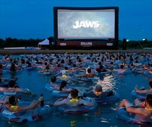 cool place to watch jaws