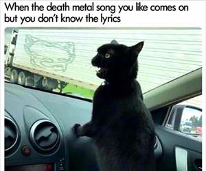 death metal sing along