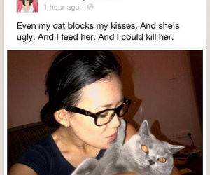 Even the Cat Blocks funny picture