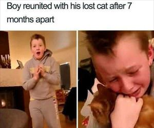found his kitty