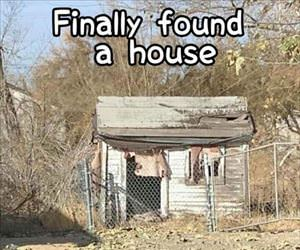 i finally found a house