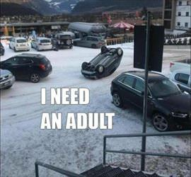 i need an adult ... 2