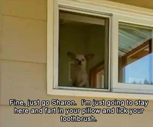just go sharon