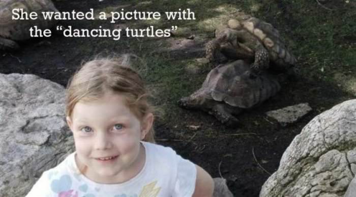 picture with the dancing turtles